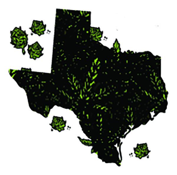 Texas CBD Industry Finding its Stride Following Hemp Law Change